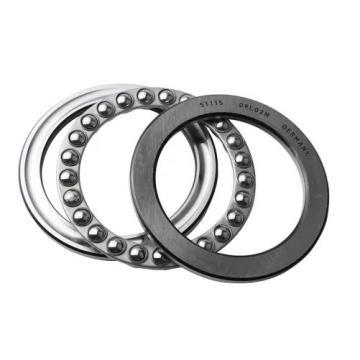 25 mm x 52 mm x 15 mm  SKF NU 205 ECP thrust ball bearings