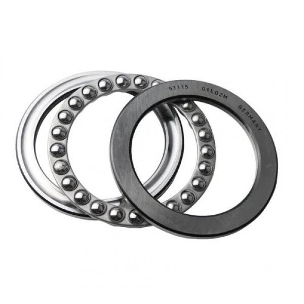 BUNTING BEARINGS AA110604 Bearings #1 image