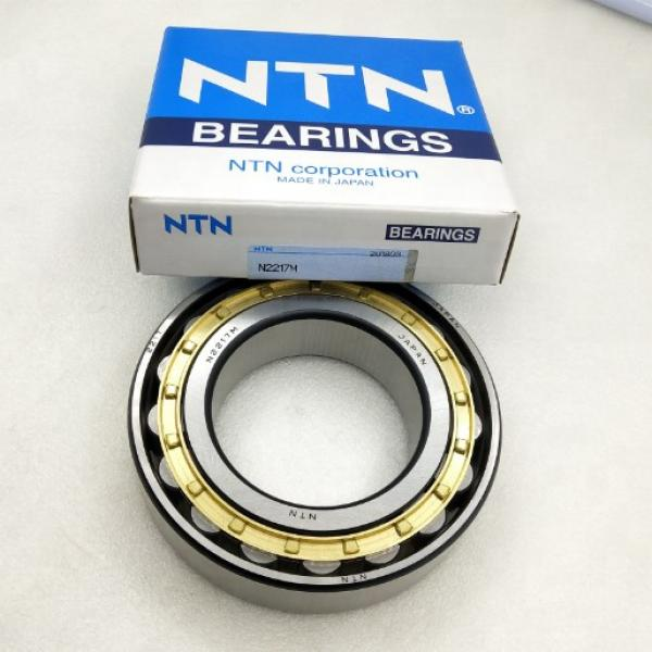 BUNTING BEARINGS FF1302 Bearings #1 image
